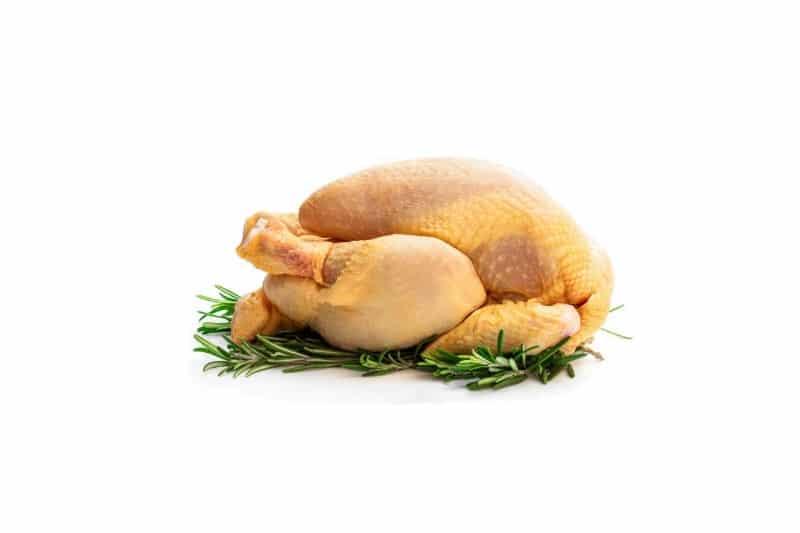 Poulet jaune blanc halal